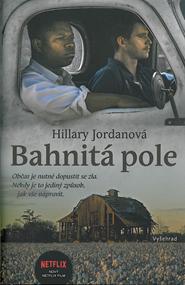 Bahnita-pole.png