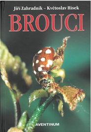 Brouci.png
