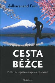 Cesta.png