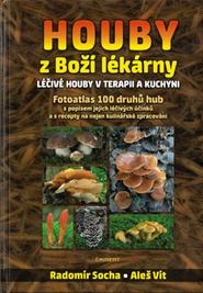 Houby-z-bozi-lekarny.png