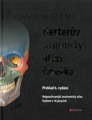 Netteruv.png