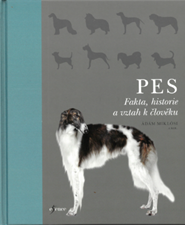 Pes.png